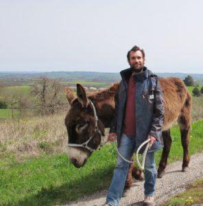 L'ânier entraine son âne