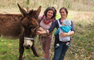 balade avec un âne à Laguépie
