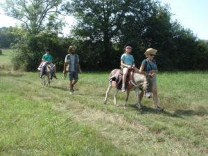 Les enfants sur les ânes en balade accompagnée